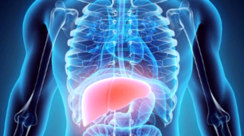 Чернодробната стеатоза дебне от засада