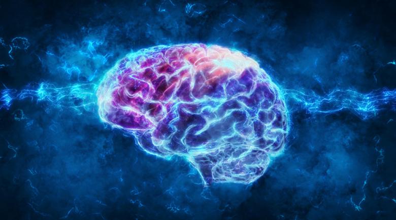 Бъркате думи – проверете мозъка си