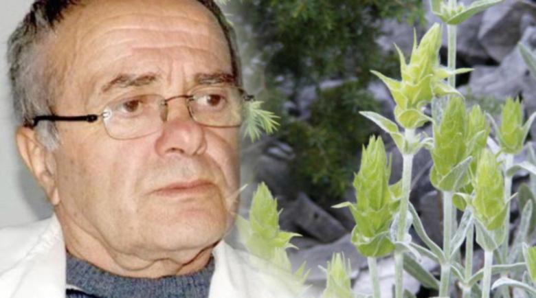 Д-р Анатоли Аликовски: Мурсалският чай има уникални лечебни свойства