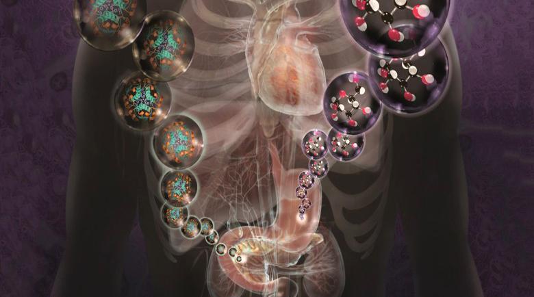 Каква е връзката между гладуването, инсулина, лечението на рак и поликистозата