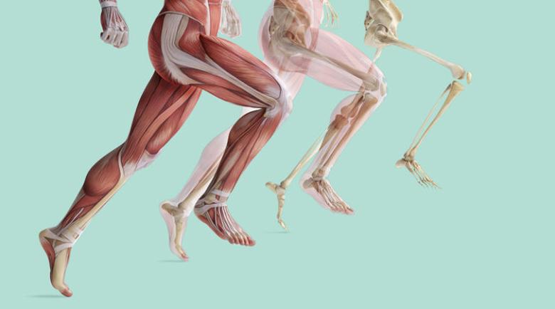 Можем да отслабнем по-бързо с ходене, отколкото с бягане?