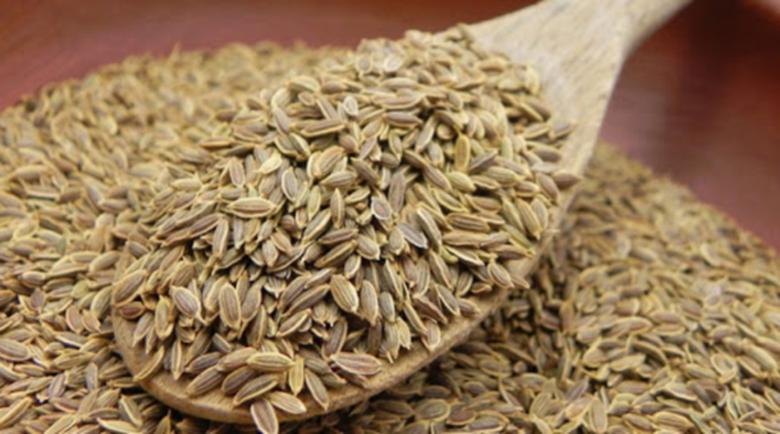 Семената от копър са отлично природно лекарство срещу безсъние и болки в бъбреците