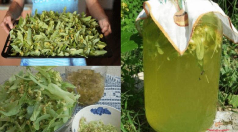 Домашна лимонада от липа успокоява и облекчава стреса