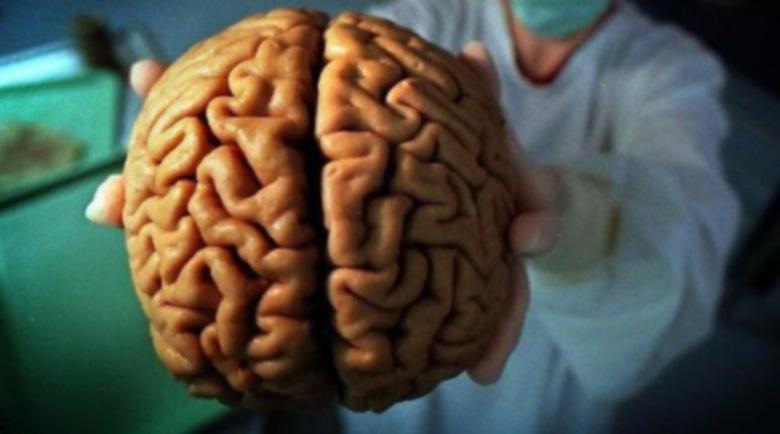 При мозъчен удар – предпазни мерки, лечение, хранене, билки