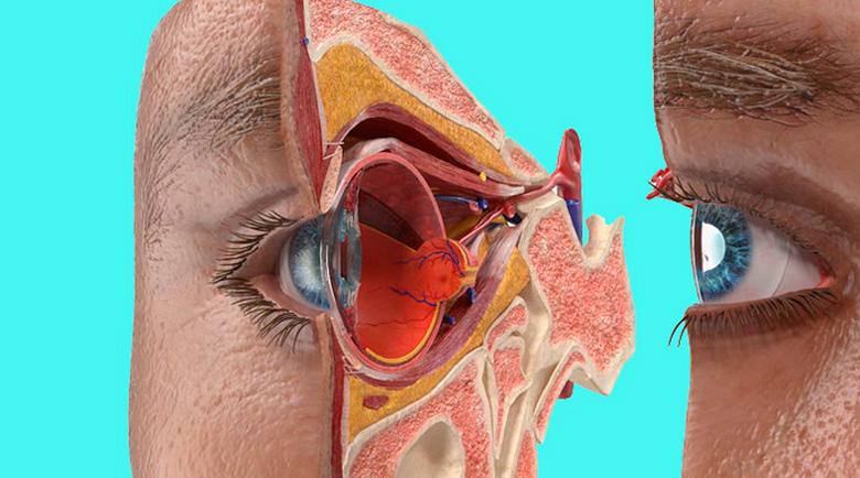 Как да възстановим сами зрението – методът на академик Юрий Утехин