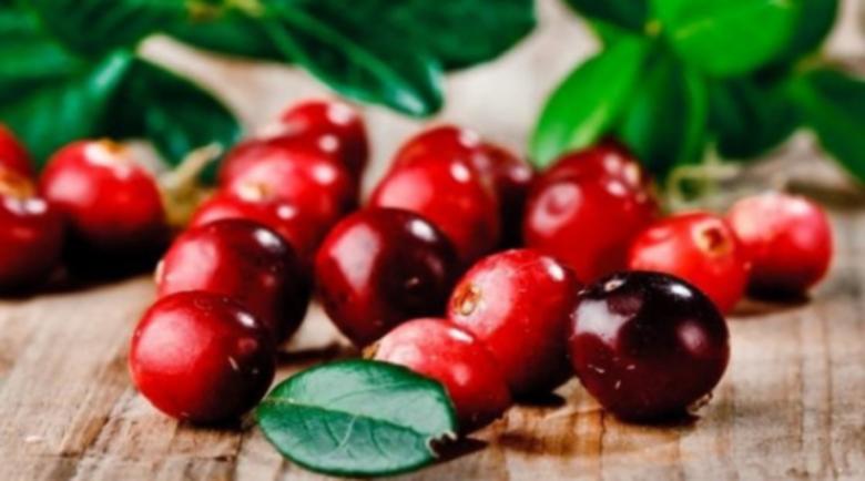 Какви са ползите от червените боровинки?