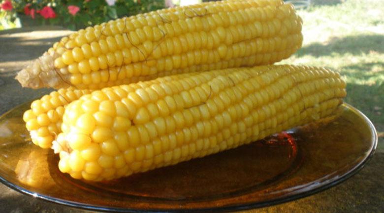 Ползи за здравето от царевицата – вкусна и важна