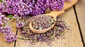 При хормонални проблеми, стрес и невроза пийте чай от риган