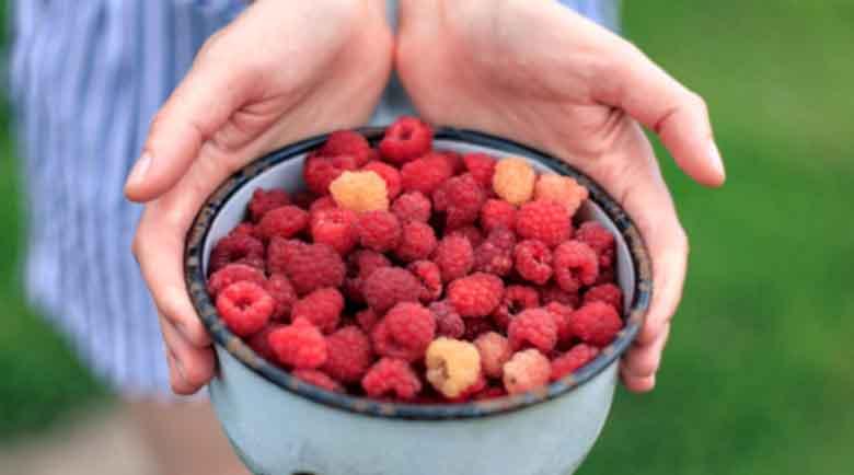 13 ползи за здравето от малините – здраво сърце, без артрит…
