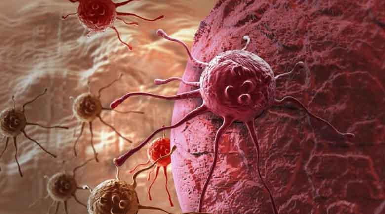 Заблудите за рака, които объркват болните