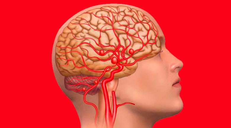Подобрете мозъчното си кръвообращение с тези три упражнения
