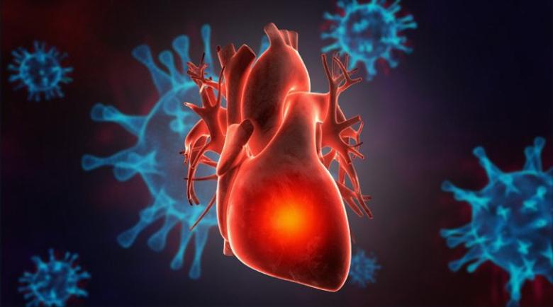 Ковид-19 поразява не само белите дробове, но и сърцето
