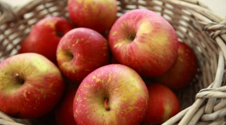 Какъв цвят ябълка да ядем за всяко заболяване