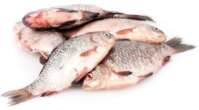 Яжте повече риба – ще ви предпази от инсулт и инфаркт