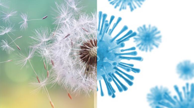 Кихането в днешно време: Дали е COVID-19 или алергия?