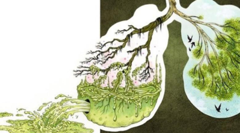 Древноиндийски метод за лечение на белите дробове и удължаване на живота