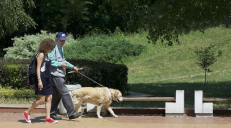 Кардиологът доц. Петровски: 5 часа на седмица в парка за силно сърце!