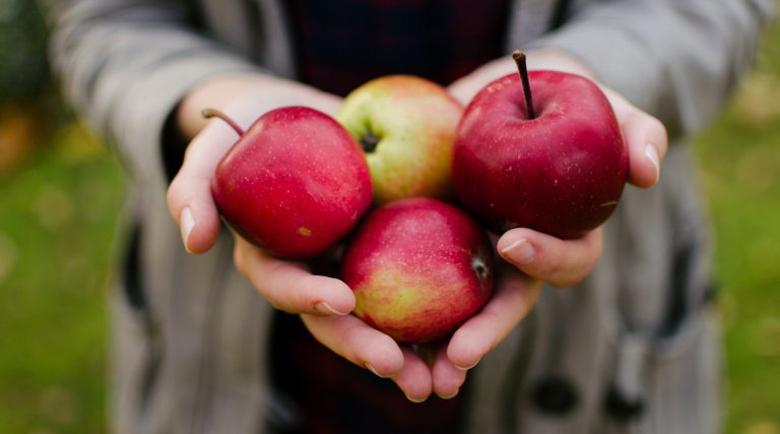 Майка на две деца: Ябълките ми спасиха живота